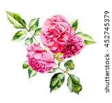 rosebush. pattern from pink...   Shutterstock . vector #452745379