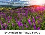 fantastic sunny day. overcast... | Shutterstock . vector #452754979