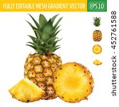 pineapple on white background.... | Shutterstock .eps vector #452761588