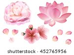 Stock vector petals and rose sakura peony and lotus flowers on white background vector editable elements 452765956