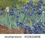 Irises  By Vincent Van Gogh ...