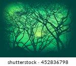 tree silhouette in vintage... | Shutterstock . vector #452836798