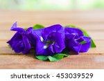 pea flowers on wood | Shutterstock . vector #453039529