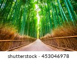 Bamboo Forest Of Kyoto  Japan.