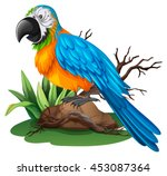 parrot with blue and yellow... | Shutterstock .eps vector #453087364