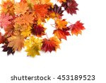 autumn maple leaves | Shutterstock . vector #453189523