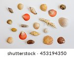 collection of sea shells on a... | Shutterstock . vector #453194350