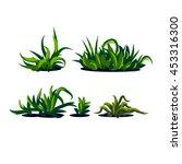 set of grass on a white... | Shutterstock .eps vector #453316300