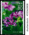 "Small photo of BANGKOK, THAILAND - JULY 07, 2016: A stamp printed in Japan shows primrise pink flower, series ""Afforestation Gifu"", circa 2006."