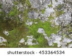 Old Gray Stone Wall With Green...