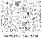 hand drawn doodles of horse... | Shutterstock .eps vector #453375640