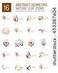 geometric leaf icon set. thin... | Shutterstock . vector #453387604