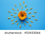 Fresh Calendula Flower With...