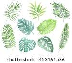 watercolor set of tropical...   Shutterstock . vector #453461536