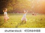 happy little kids blowing soap... | Shutterstock . vector #453464488
