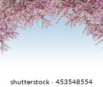 pink flower blossom frame with... | Shutterstock . vector #453548554