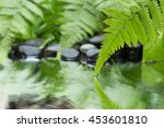 green leaf of plant with fern... | Shutterstock . vector #453601810