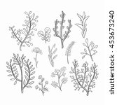 set of sketch of wild flowers... | Shutterstock .eps vector #453673240