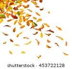 autumn oak leaves falling down... | Shutterstock . vector #453722128
