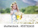 cute little smiling girl in... | Shutterstock . vector #453732610