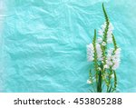 nice white flowers on light... | Shutterstock . vector #453805288