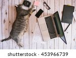 Stock photo personal workspace kitten with technology on the floor 453966739