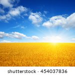 wheat field and sun in the sky  | Shutterstock . vector #454037836