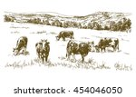 cows grazing on meadow. hand... | Shutterstock .eps vector #454046050