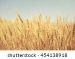 wheat farm and blue sky | Shutterstock . vector #454138918