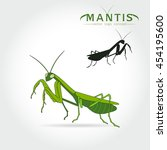 Beetle Praying Mantis Isolated...