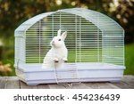 Stock photo little white rabbit sitting in the cage 454236439