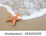 starfish on the beach | Shutterstock . vector #454293250