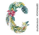 vector illustration tropical... | Shutterstock .eps vector #454346680