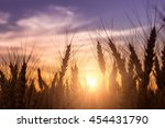 Majestic Sunset Over A Field O...
