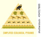 Ecosystem Energy Flow....