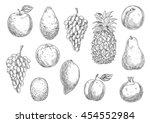 sketch of fruits in retro style.... | Shutterstock .eps vector #454552984
