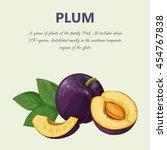 plum | Shutterstock .eps vector #454767838