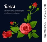roses | Shutterstock .eps vector #454767928