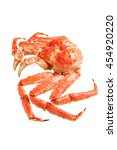 red king crab isolated on white ... | Shutterstock . vector #454920220