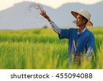 Farmer Working On Rice Field...