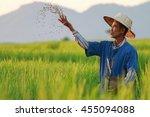 Farmer Working On Rice Field...