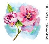 flower pink peony watercolor.... | Shutterstock . vector #455216188