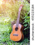 Small photo of abstract portrait of a ukulele on nature background,ukulele close up,music concept