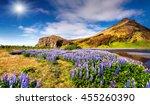 typical icelandic landscape... | Shutterstock . vector #455260390