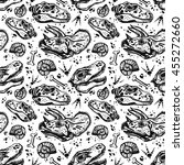 sketchy fossil seamless pattern ... | Shutterstock .eps vector #455272660