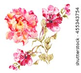 flower watercolor background.... | Shutterstock . vector #455343754