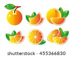 orange fruit isolated on white... | Shutterstock .eps vector #455366830