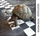 slow and steady wins the race.... | Shutterstock . vector #455411026