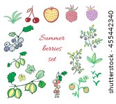 set of summer berries.... | Shutterstock .eps vector #455442340