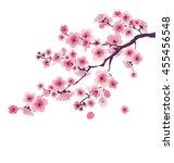 pastel color cherry blossom.... | Shutterstock .eps vector #455456548